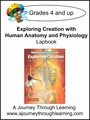 Apologia Exploring Creation with Human Anatomy and Physiology Lapbook