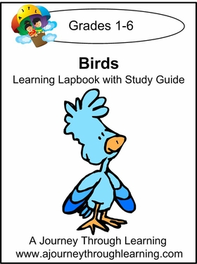 Birds Lapbook With Study Guide for Foundations--8.00