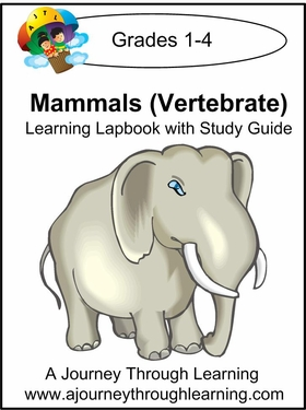Exploring Mammals Grades 1-4 Lapbook with Study Guide--8.00