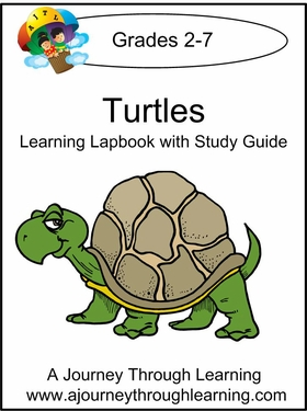 Turtles Lapbook with Study Guide -8.00