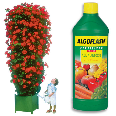 Algoflash All Purpose