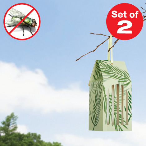 Disposable Fly Trap - Set of 2