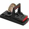 Easy Set Mouse Traps - Set of 2