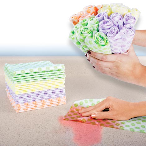 Spic and Span Reusable Wipes Set of 6