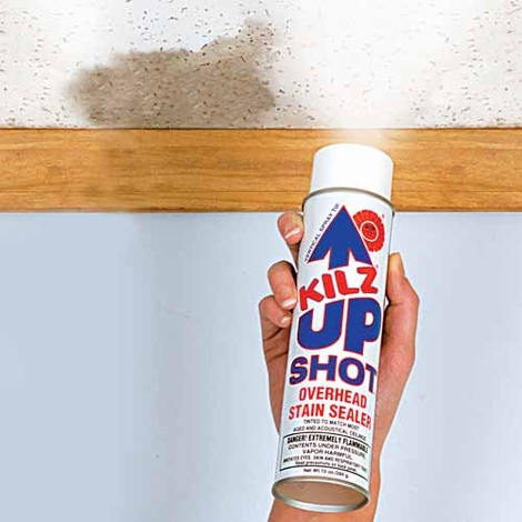 Up Shot Ceiling Stain Remover