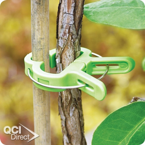 Vine And Flower Clips