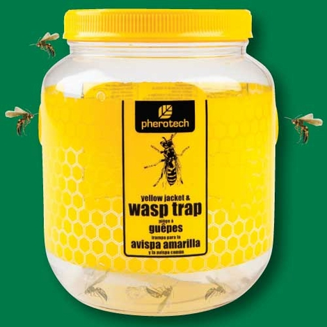 Yellow Jacket and Wasp Trap (Wide)
