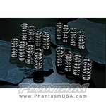 JUN (1009M-H001) Dual Valve Springs - Complete Set