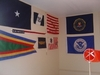 U.S. Navy & Coast Guard Pennants