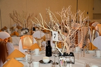 Manzanita Tree Wedding Centerpiece Ideas
