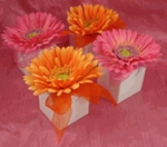 Bridal Favor Boxes and Favor Bags