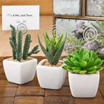 Potted Succulent Favor Placecard Holder Photo Holder