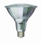 Bulbrite LED PAR38 Light Bulbs