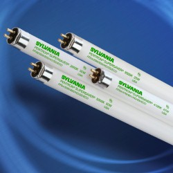 Sylvania T5 Pentron 800 High Output Fluorescent Bulbs