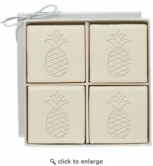 ECO-LUXURY : 4 SQUARE GUEST BARS PINEAPPLE MOTIF