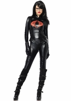 Baroness Sexy 4 PC Costume