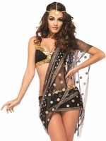 Bollywood Darling Sexy Costume