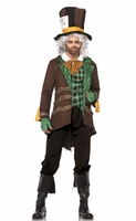 Classic Mad Hatter Sexy Men's Costume