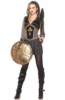 Joan Of Arc Sexy Costume