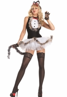 Kissable Kitty Cat Sexy 4 PC Costume