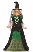 Storybook Witch Sexy Costume