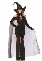 Sultry Sorceress Sexy Costume