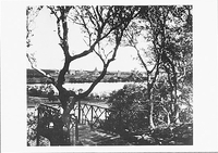 FROM ALTA VISTA ACROSS LAKE LAGUNITA TO THE STANFORD CAMPUS, c 1905