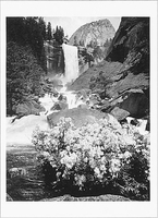 VERNAL FALL & AZALEAS, YOSEMITE NATIONAL PARK, CA, 1940
