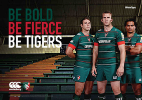 Shop Springboks