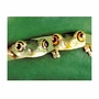 Art 4 Kids Tree Frogs Wall Art