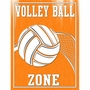 Art 4 Kids Volley Ball Zone Wall Art
