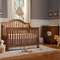 Davinci 2 Piece Nursery Set - Clover 4-in-1 Convertible Crib and Dresser Changer in Chestnut