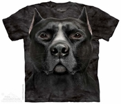 Black Pit Bull Face