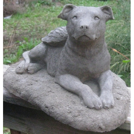 Hand Cast Pit Bull Angel Garden Statue (Natural Ears)