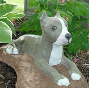 Hand Painted Pit Bull Statue (Cropped Ears)