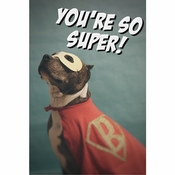 You're So Super!