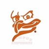 Large Virginia Tech Hokie Bird Silhouette Car Decal