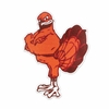 Virginia Tech Orange Hokie Bird Decal