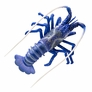 """4"""" Spiny Lobster D�cor - Blue, 1pc"""