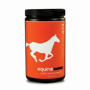 Equine Vitamins & Supplements