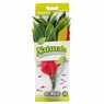 Marina Naturals Red/Yellow Dracena Silk Plant, Medium, From Hagen