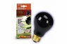 Zilla Incandescent Night Black Heat Bulb 75W