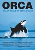 Orca: Killer Whale or Gentle Giant?