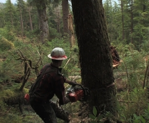 Walking In Two Worlds: A Tale of Alaska�s Tongass