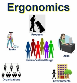 ERGONOMICS the What and Why