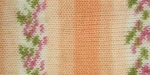 Bernat Baby Jacquards Yarn - Orange Blossom