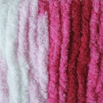 Bernat Blanket Yarn 5.3oz  - Raspberry Ribbon Variegated