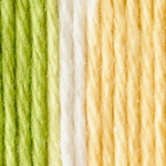 Bernat Handicrafter Cotton Yarn Ombres & Prints - Green Dream