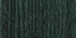 Bernat Satin Yarn - Forest Pine