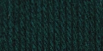 Bernat Super Value Solid Yarn - English Teal